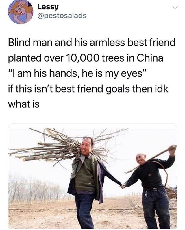 """Text - Lessy @pestosalads Blind man and his armless best friend planted over 10,000 trees in China """"I am his hands, he is my eyes"""" if this isn't best friend goals then idk what is"""