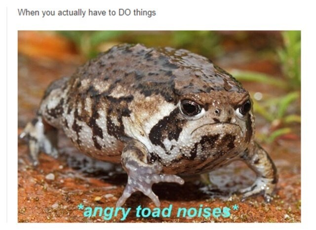 Frog - When you actually have to DO things angry toad noises.