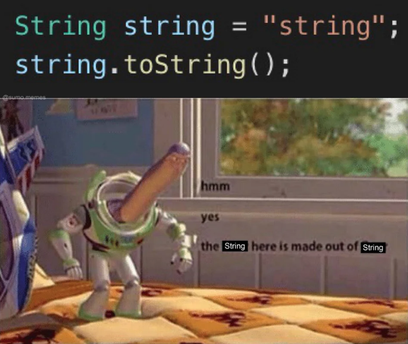 """Cartoon - String string """"string""""; 11 string.toString ( ) ; @sumo memes hmm yes the String here is made out of String"""