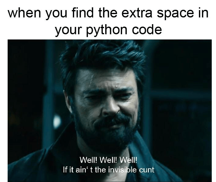 Text - when you find the extra space in your python code Well! Well! Well! If it ain' t the invisible cunt