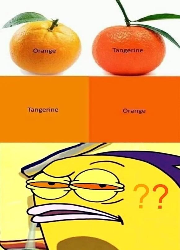 Fruit - Tangerine Orange Tangerine Orange ??