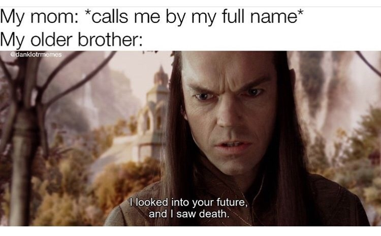 Text - My mom: *calls me by my full name* My older brother: @danklotrmemes I looked into your future, and I saw death.