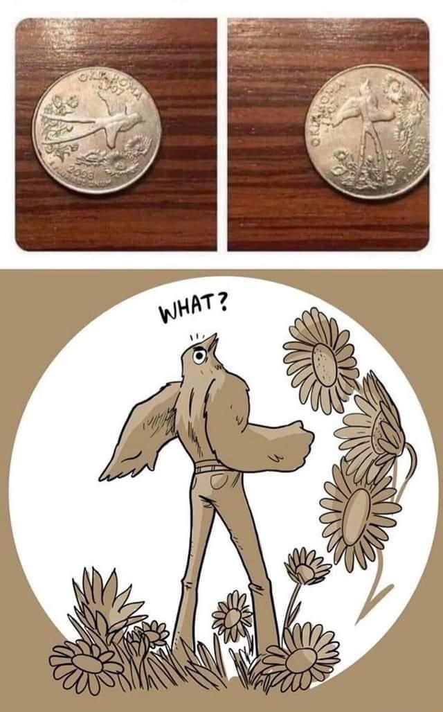 Illustration - OMA WHAT?