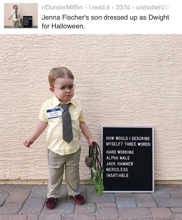 Text - r/DunderMifflin i.redd.it 237d u/shotteh22 Jenna Fischer's son dressed up as Dwight for Halloween. Pg HOW WOULD I DESCRIBE MYSELF? THREE WORDS HARD WORKING ALPHA MALE JACK HAMMER MERCILESS INSATIABLE