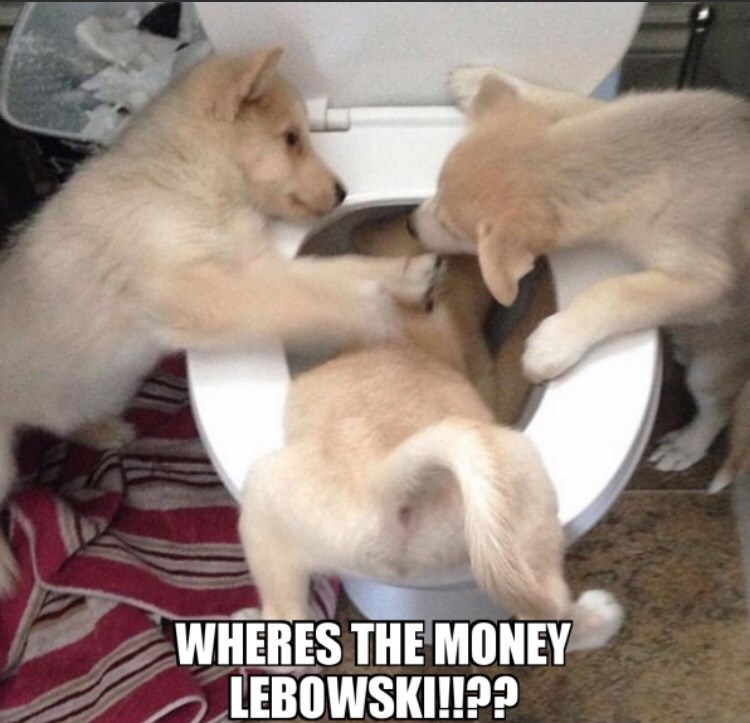 Vertebrate - WHERES THE MONEY LEBOWSKI!!??