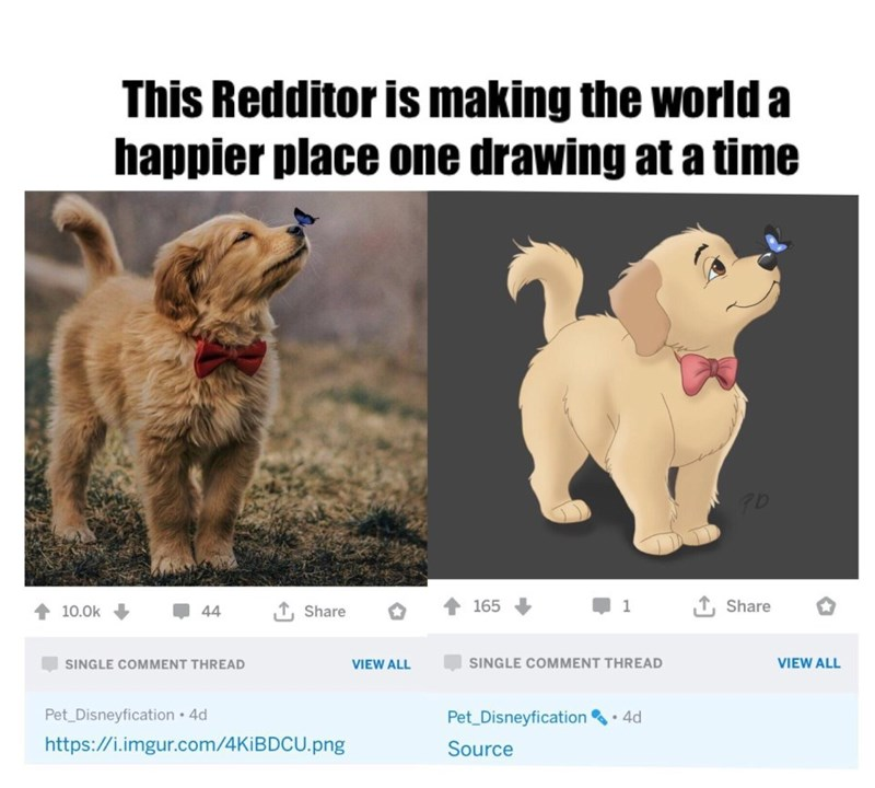 Dog - This Redditor is making the world a happier place one drawing at a time Share 165 1 10.0k 44 Share SINGLE COMMENT THREAD VIEW ALL SINGLE COMMENT THREAD VIEW ALL Pet Disneyfication 4d https://i.imgur.com/4KIB DCU.png Pet_Disneyfication 4d Source