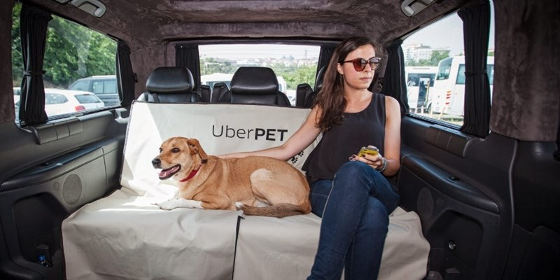 Car seat - UberPET