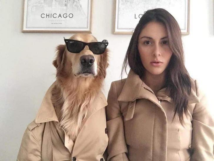 Eyewear - LO CHICAGO