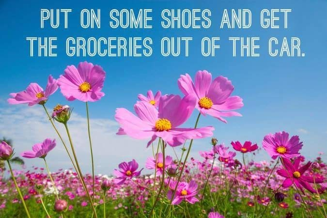 Flower - PUT ON SOME SHOES AND GET THE GROCERIES OUT OF THE CAR.