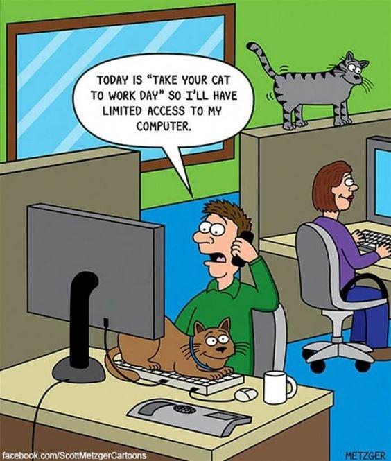 cat comics - 9372108032