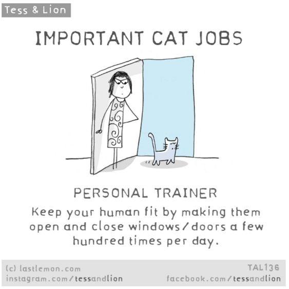 cat comics - 9372110848