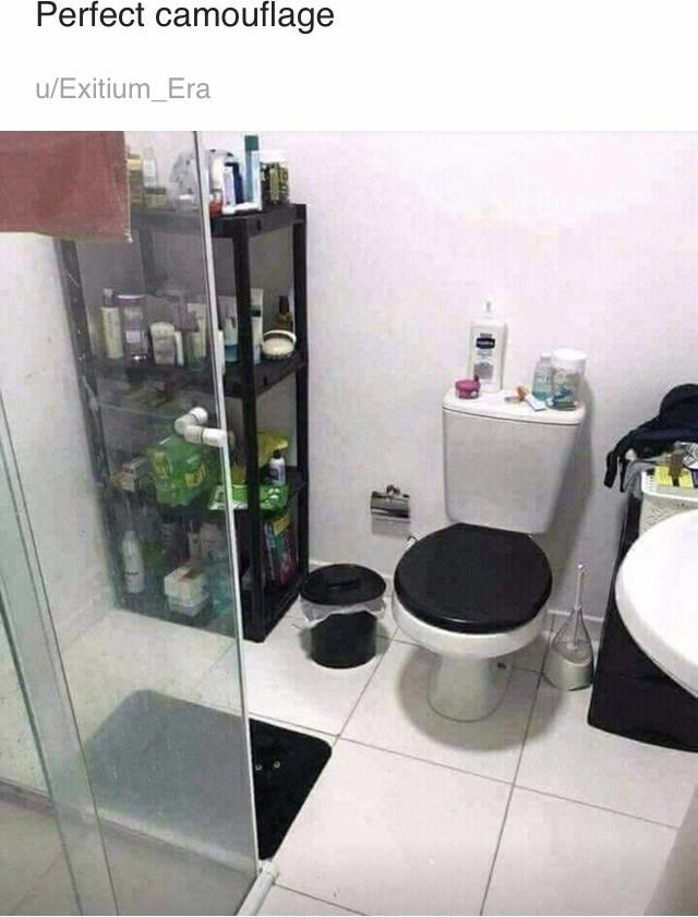 Bathroom - Perfect camouflage u/Exitium_Era