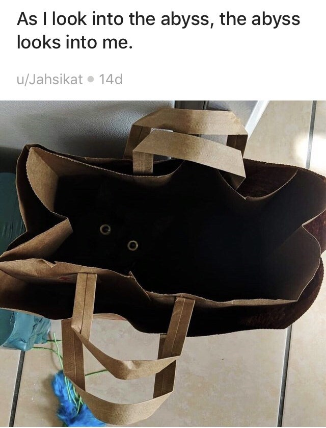 Product - As I look into the abyss, the abyss looks into me. u/Jahsikat 14d