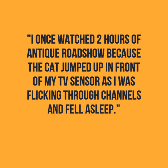 """Text - """"IONCE WATCHED 2 HOURS OF ANTIQUE ROADSHOW BECAUSE THE CAT JUMPED UP IN FRONT OF MY TV SENSOR ASI WAS FLICKING THROUGH CHANNELS AND FELL ASLEEP."""""""