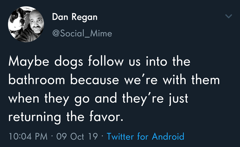 Text - Dan Regan @Social_Mime Maybe dogs follow us into the bathroom because we're with them when they go and they're just returning the favor. 10:04 PM 09 Oct 19 Twitter for Android