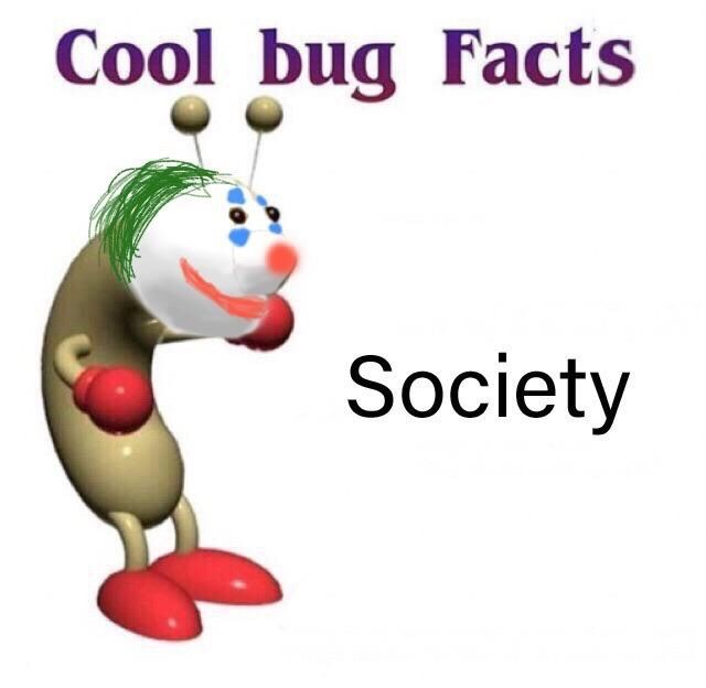 Text - Cool bug Facts Society
