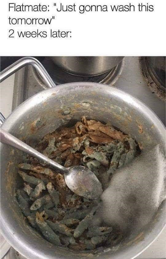 """Cuisine - Flatmate: """"Just gonna wash this tomorrow"""" 2 weeks later:"""