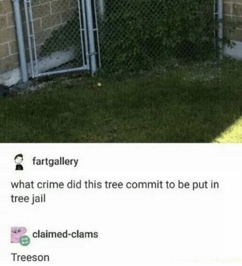 Lawn - fartgallery what crime did this tree commit to be put in tree jail claimed-clams Treeson