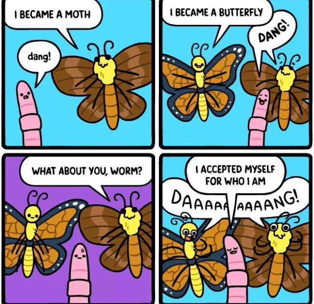 Insect - I BECAME A MOTH BECAME A BUTTERFLY DANG! dang! WHAT ABOUT YOU, WORM? IACCEPTED MYSELF FOR WHO I AM DAAAA AAAANG