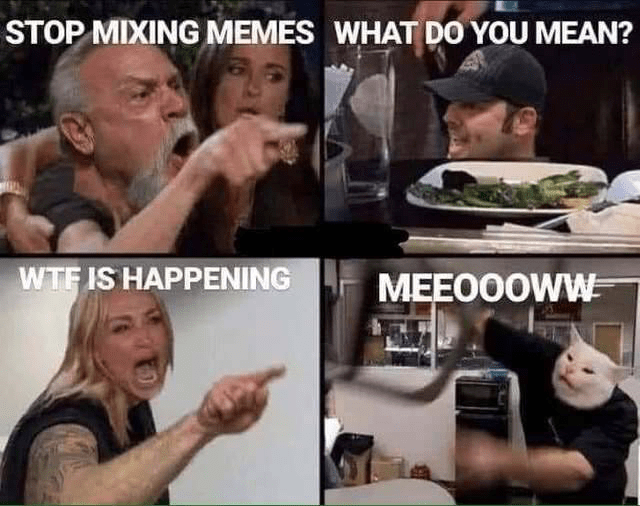 Facial expression - STOP MIXING MEMES WHAT DO YOU MEAN? WTF IS HAPPENING MEEO0OWW