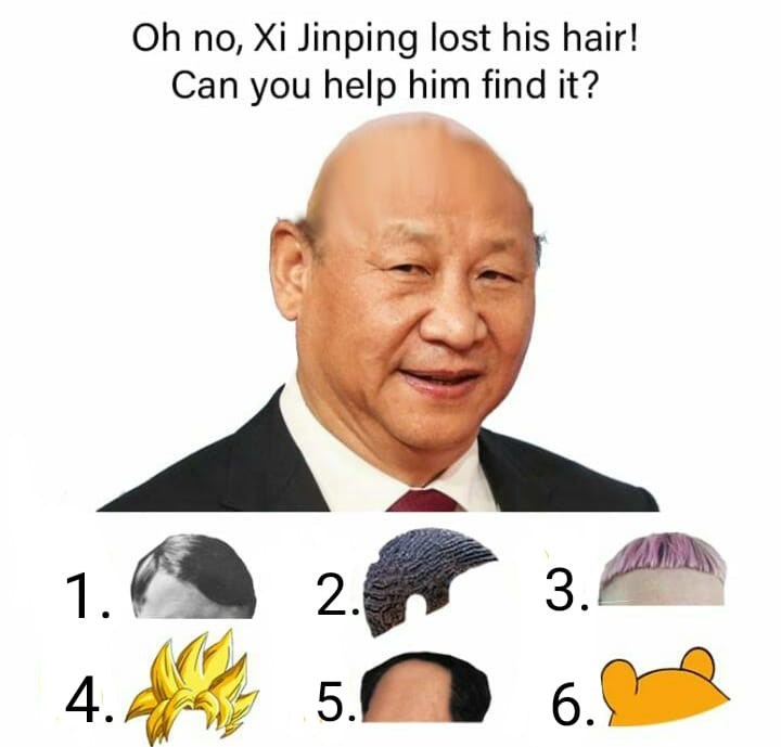Text - Oh no, Xi Jinping lost his hair! Can you help him find it? 3. 2. 1. 4. 5. 6.