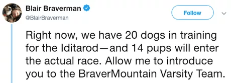 Text - Blair Braverman Follow @BlairBraverman Right now, we have 20 dogs in training for the Iditarod-and 14 pups will enter the actual race. Allow me to introduce you to the BraverMountain Varsity Team