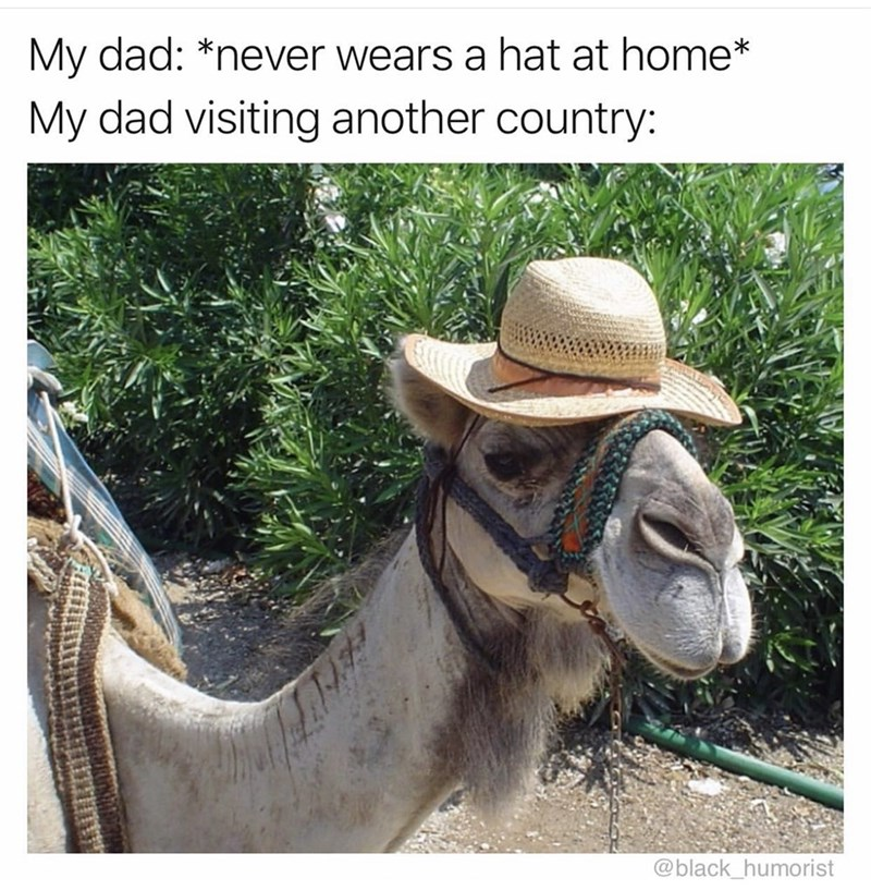 Adaptation - My dad: *never wears a hat at home* My dad visiting another country: @black_humorist হং