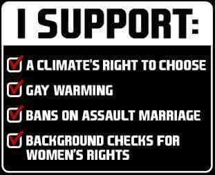 Text - I SUPPORT CA CLIMATE'S RIGHT TO CHOOSE GAY WARMING BANS ON ASSAULT MARRIAGE BACKGROUND CHECKS FOR WOMEN'S RIGHTS