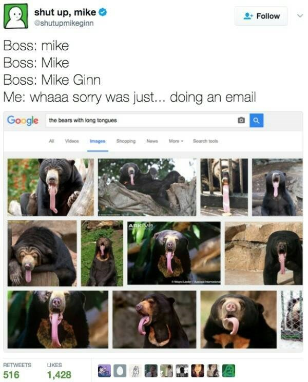 Facial expression - shut up, mike @shutupmikeginn Follow Boss: mike Boss: Mike Boss: Mike Ginn Me: whaaa sorry was just... doing an email Google the bears with long tongues News Mone-Soarch tols AlVideos Iages Shopping ARKIVE RETWEETS LIKES 516 1,428