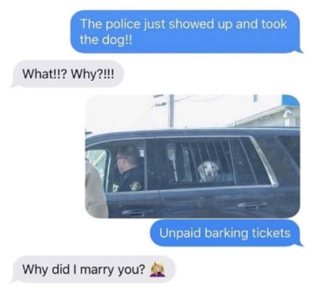 Transport - The police just showed up and took the dog!! What!? Why?!!! Unpaid barking tickets Why did I marry you?