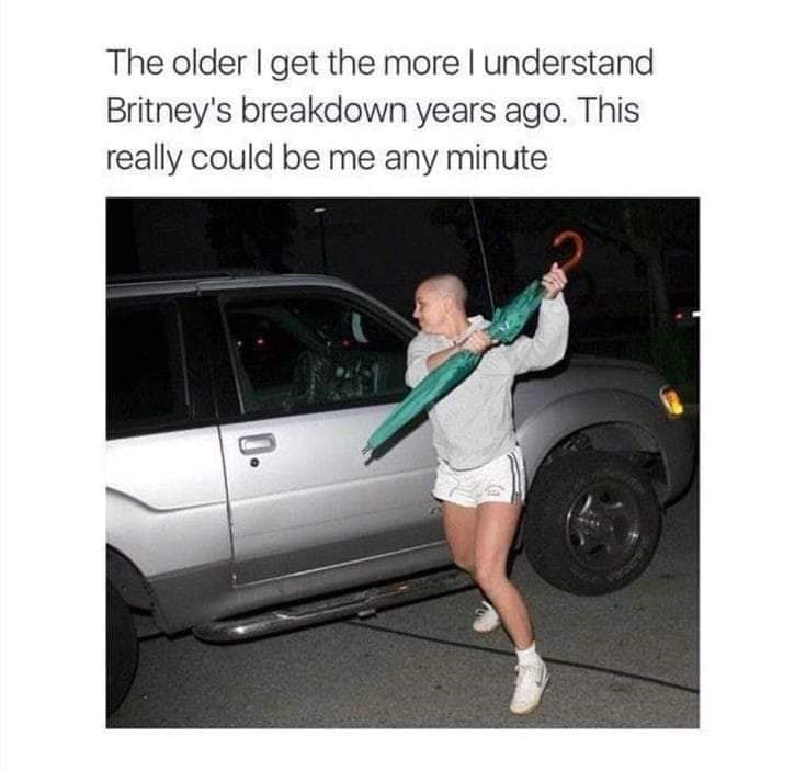Vehicle door - The older I get the more I understand Britney's breakdown years ago. This really could be me any minute