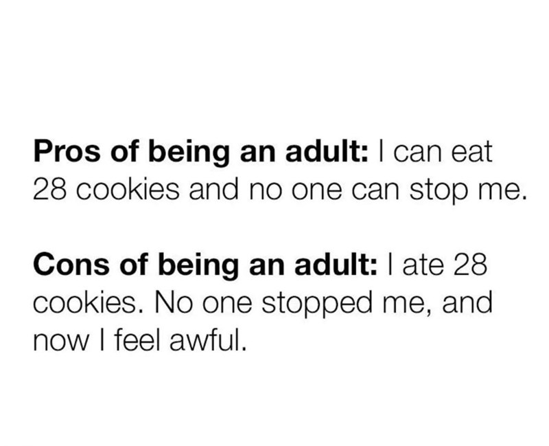 Text - Pros of being an adult: can eat 28 cookies and no one can stop me. Cons of being an adult: I ate 28 cookies. No one stopped me, and now I feel awful.