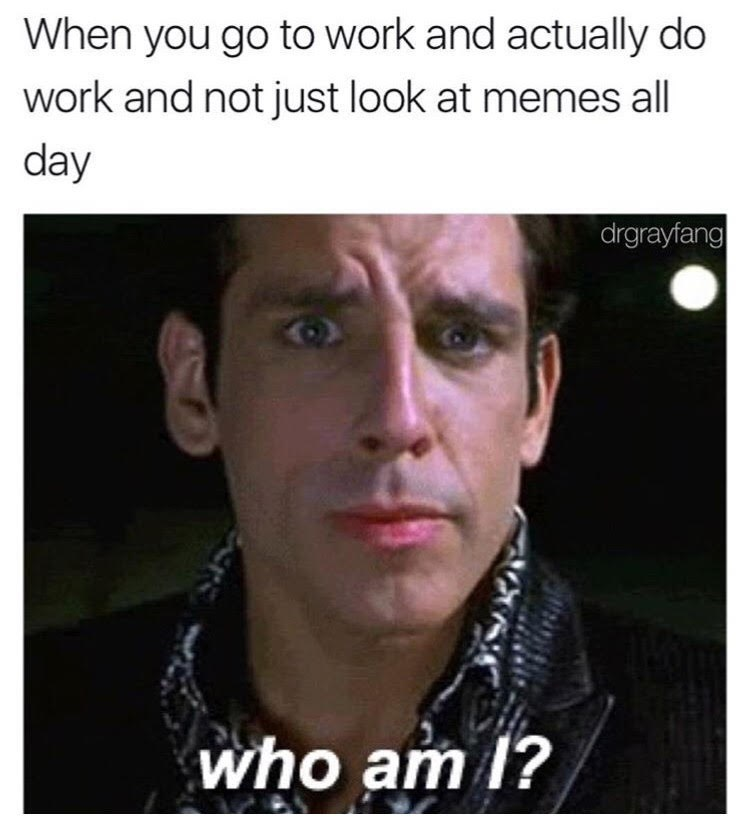 Face - When you go to work and actually do work and not just look at memes all day drgrayfang who am 1?