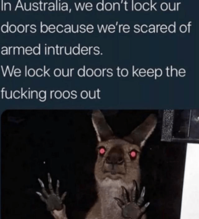 Text - In Australia, we don't lock our doors because we're scared of armed intruders. We lock our doors to keep the fucking roos out