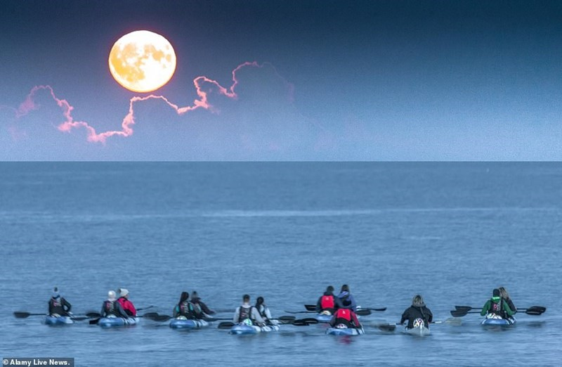 group of kayakers in the water underneath the hunter's moon