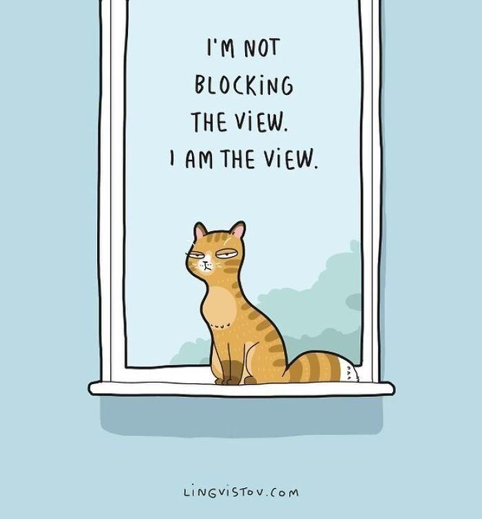 Cat - IM NOT BLOCKING THE VIEW AM THE VIEW. LINGVISTOV.Com