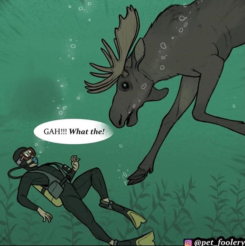 Cartoon - O. GAH!!! What the! @pet foolery