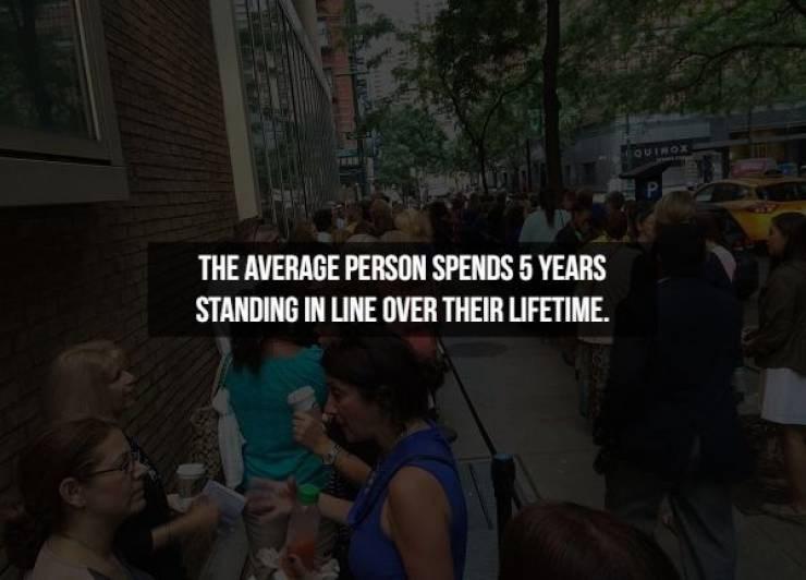 People - OUINOX P THE AVERAGE PERSON SPENDS 5 YEARS STANDING IN LINE OVER THEIR LIFETIME.