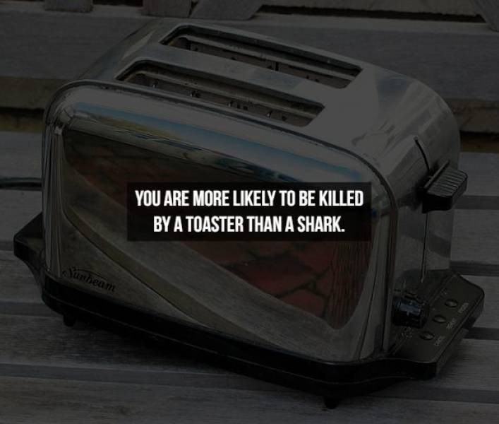 Toaster - YOU ARE MORE LIKELY TO BE KILLED BY A TOASTER THAN A SHARK. unbeam