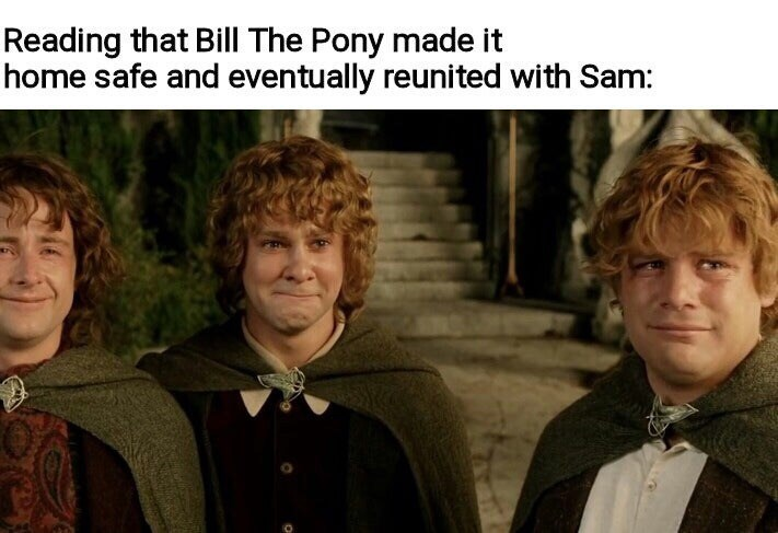 Adaptation - Reading that Bill The Pony made it home safe and eventually reunited with Sam: