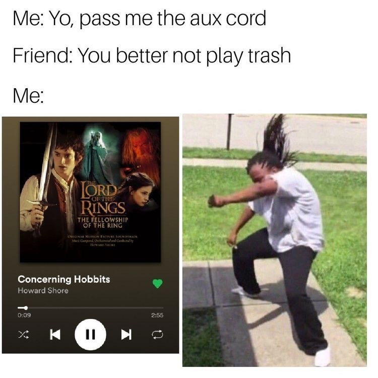 Text - Me: Yo, pass me the aux cord Friend: You better not play trash Ме: LORD RINGS OFTHE THE FELLOWSHIP OF THE RING DoNA omon FICE SOUNDERAC M CempO C Hosan Concerning Hobbits Howard Shore 0:09 2:55