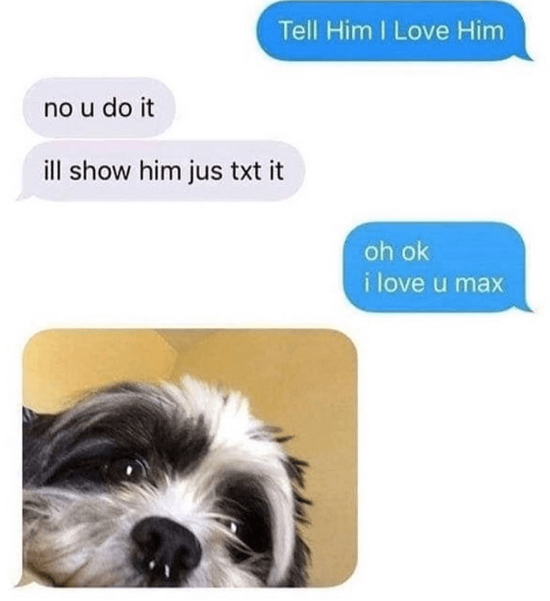 Dog - Tell Him I Love Him no u do it ill show him jus txt it oh ok i love u max