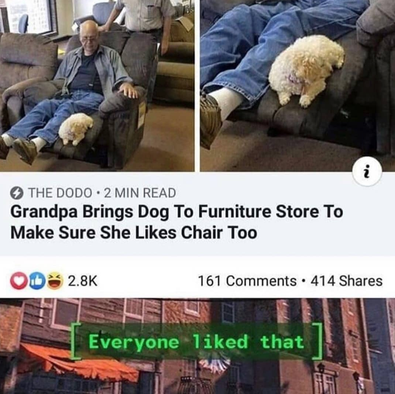 Product - THE DODO 2 MIN READ Grandpa Brings Dog To Furniture Store To Make Sure She Likes Chair Too 161 Comments 414 Shares 2.8K Everyone 1iked that