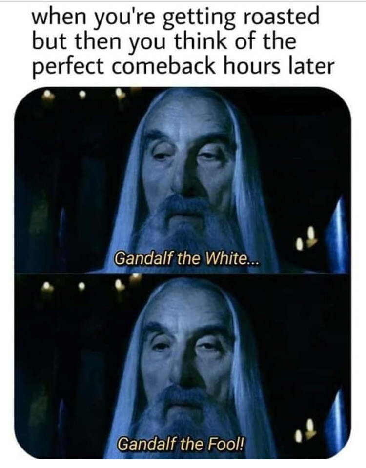 Text - when you're getting roasted but then you think of the perfect comeback hours later Gandalf the White... Gandalf the Fool!