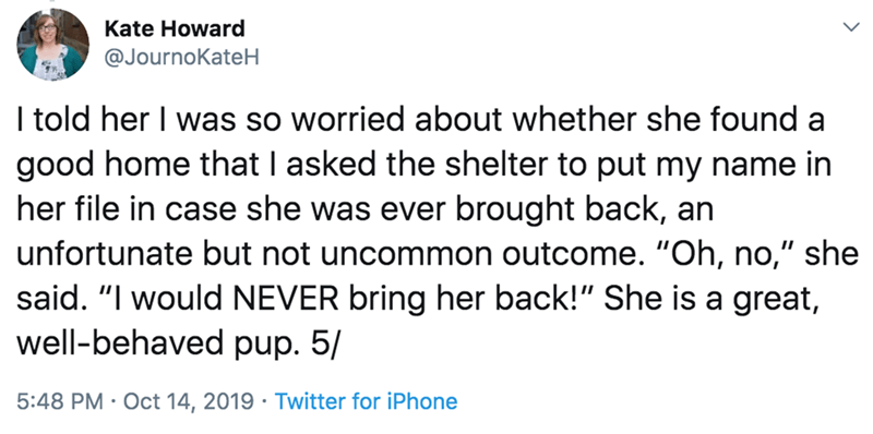 """Text - Kate Howard @JournoKateH I told her I was so worried about whether she found a good home that I asked the shelter to put my name in her file in case she was ever brought back, an unfortunate but not uncommon outcome. """"Oh, no,"""" she said. """"I would NEVER bring her back!"""" She is a great, well-behaved pup. 5/ 5:48 PM Oct 14, 2019 Twitter for iPhone"""
