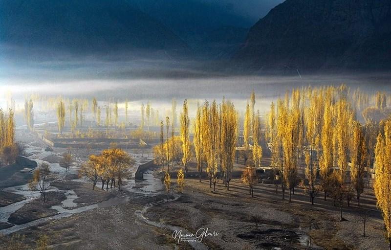 photo green trees if valley pakistan