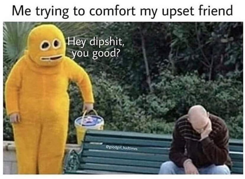 Text - Me trying to comfort my upset friend Hey dipshit, you good? Gyoodgirt badtimes
