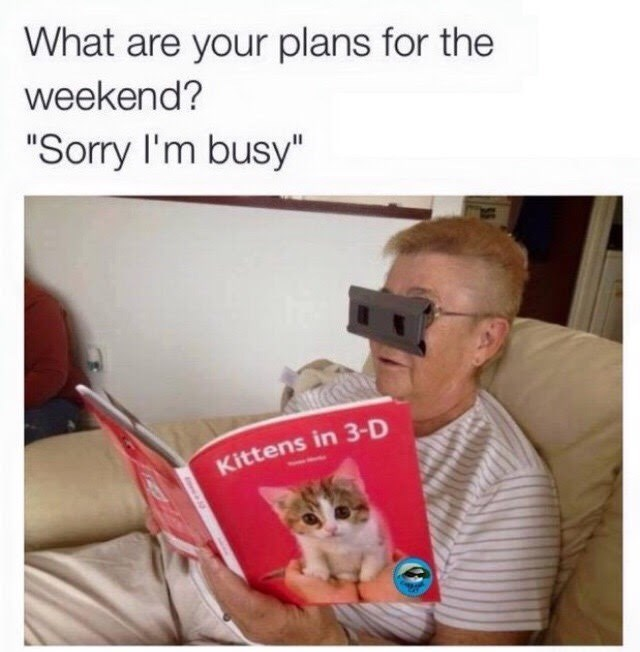 "Cat - What are your plans for the weekend? ""Sorry I'm busy"" Kittens in 3-D"