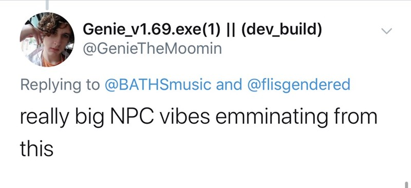 Text - Genie_v1.69.exe (1) || (dev_build) @GenieTheMoomin Replying to @BATHSmusic and @flisgendered really big NPC vibes emminating from this