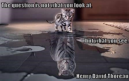 Bengal tiger - The question is not what you look at. butwhatyou see. Henry David Thoreau